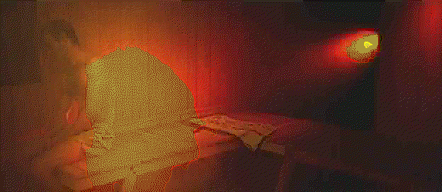Frame 10, Floyd-Steinberg, octree
